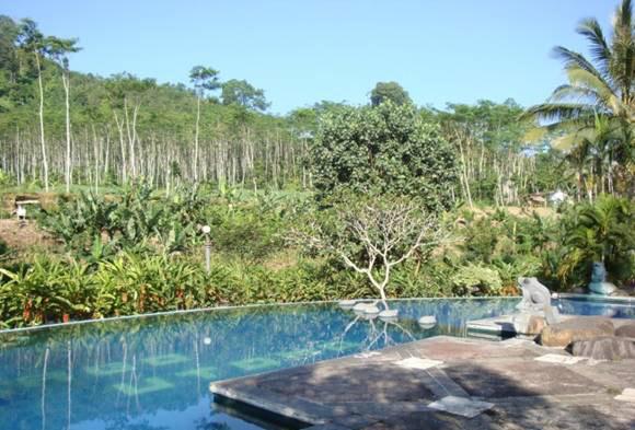 Margo Utomo Hill View Cottage Kalibaru - Hotels